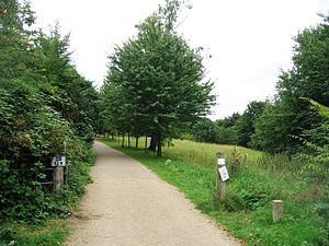 English: Disabled access to Wandlebury ring Th...