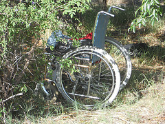 Wheelchair in the Wild