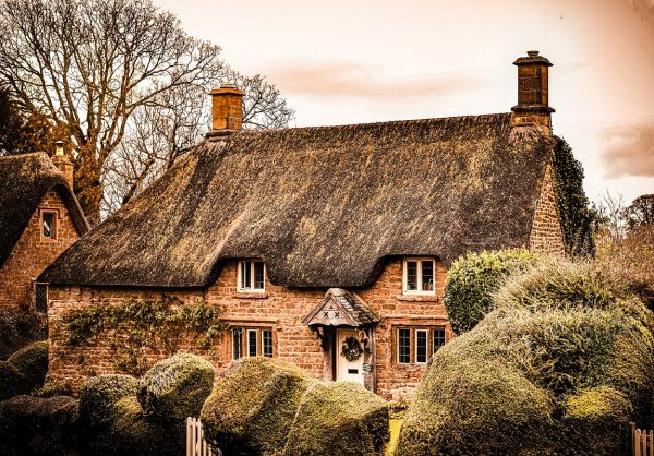 Thatched roof house in the background and the bushes in the foreground