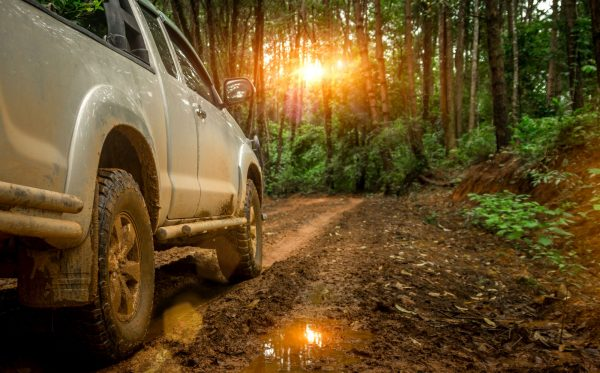 Off-road travel on mountain road with sunset shining through trees