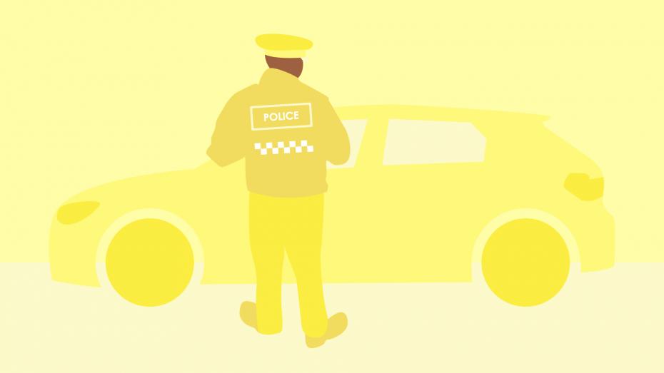 Insurance dodges: crime and punishment
